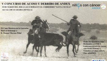 Cartel del concurso de acoso y derribo de Andex