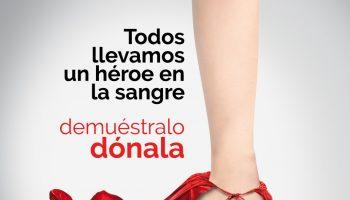 donación ALCALÁ GUADAÍRA