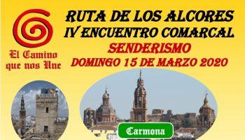 cartel 2020 El Camino que nos une