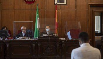 """Sevilla.- Tribunales.-La defensa del acusado de asesinar a su madre alega que estaba """"enajenado"""" y que confesó el crimen"""