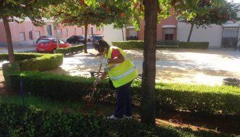 Sevilla.- Ayuntamiento de Alcalá de Guadaíra duplica los esfuerzos en el mantenimiento de plazas y parques urbanos